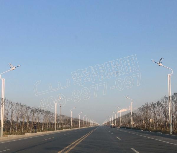 江苏省射阳县S329路灯改造项